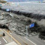 Казино против цунами