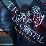 Казино Tigre de Cristal тихо крадётся по России