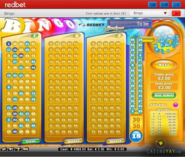bingo_redbet_netent