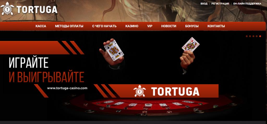 tortuga_kazino